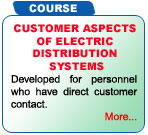Customer Aspects of Electric Distribution Systems Training Class