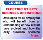 Electric Utility Business Operations Workshop Training